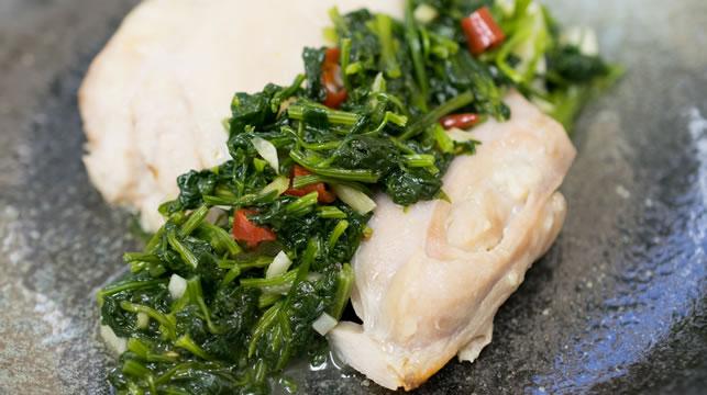蒸し鶏のパクチーソース