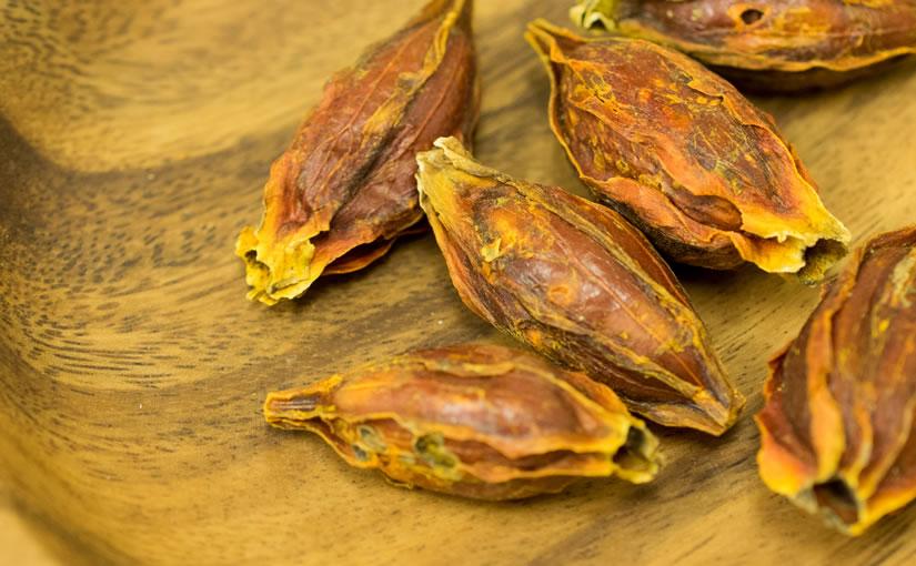クチナシの実は黄色の染色と漢方薬に用いられるスパイス!