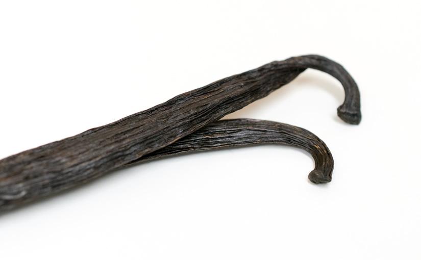 バニラの濃厚な甘い香りとトトナック族の愛の伝説