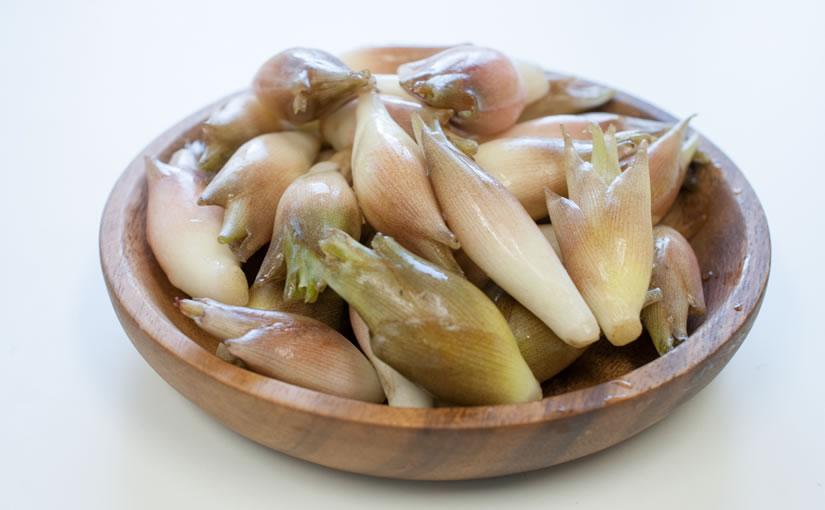 夏野菜や麺類にぴったり、日本を代表するハーブ「ミョウガ」